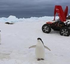 Китайцы открыли новую станцию в Антарктиде